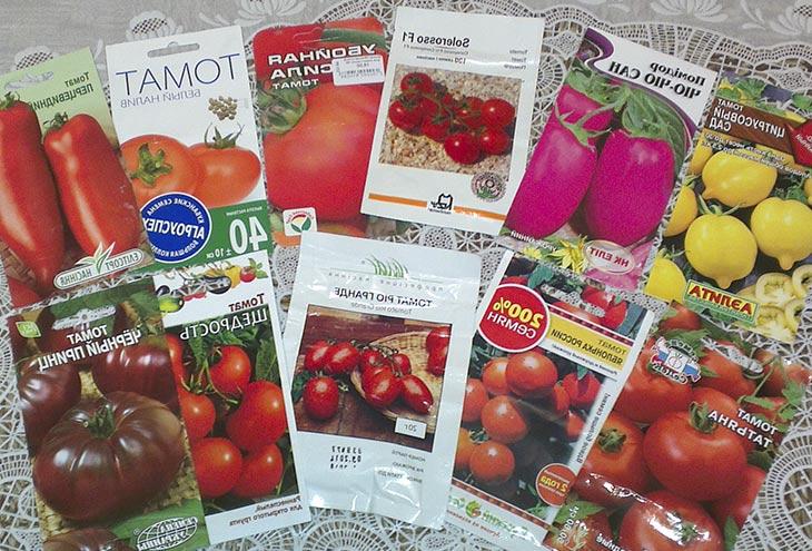 Как выбрать семена томатов