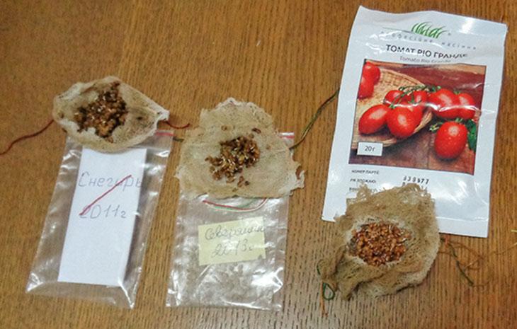 Замачивание семян томатов без путаницы