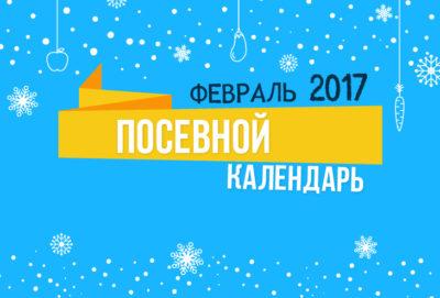 Лунный календарь 2017 февраль