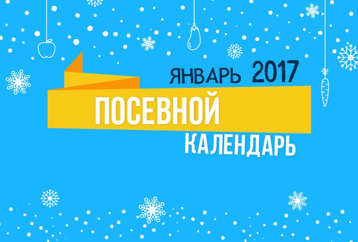 Лунный календарь 2017 январь